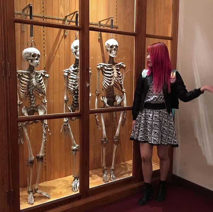 human skulls medicine museum