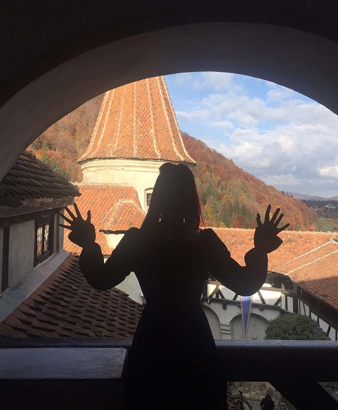 real count dracula castle
