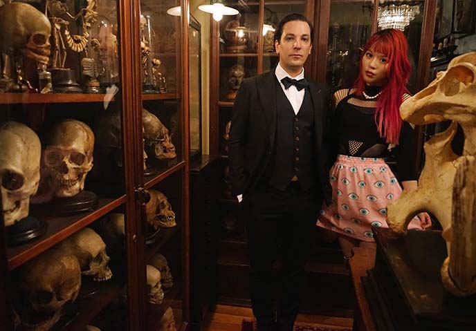 oddities tv ryan matthew cohn