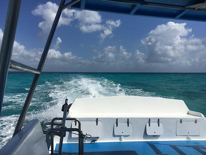 boat ride to catalina island