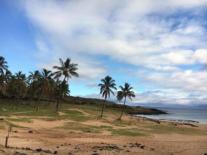 anakena beach isla de pascua
