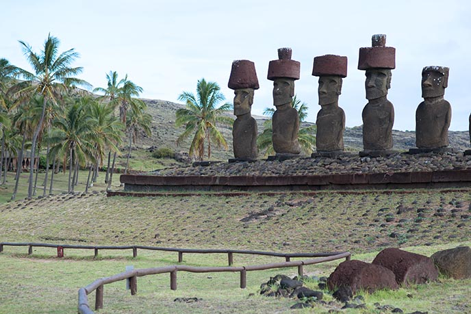 moai topknots hats sculptures