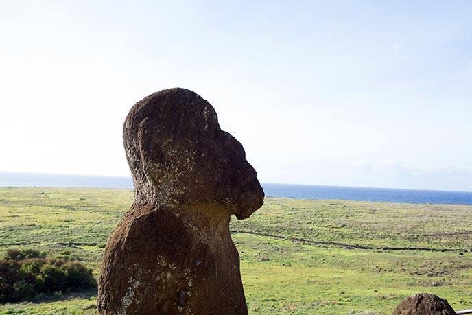 tukuturi kneeling seated moai beard
