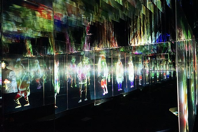 teamlab borderless exhibitions
