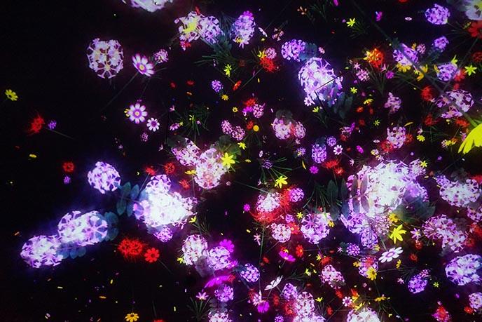 tokyo light installations teamlab planet