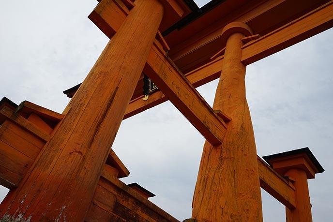 floating torii closeup
