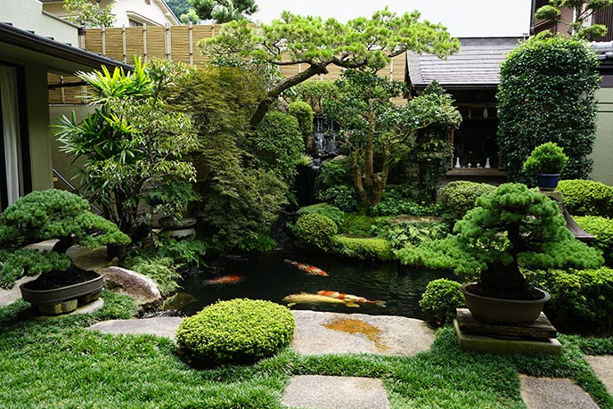 Itsukushima japanese garden koi pond