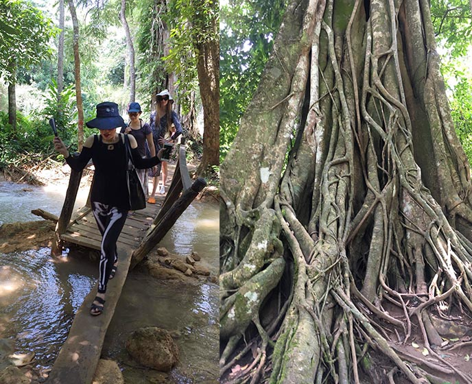 hike to kuang si waterfalls