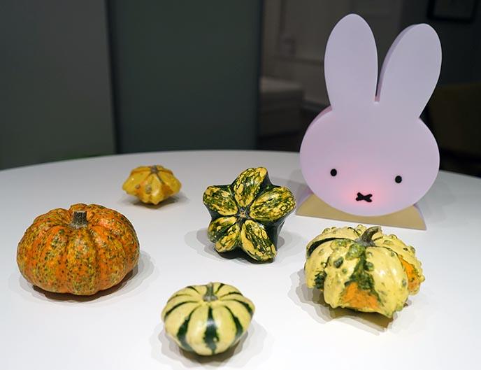 weird bizarre pumpkins gourds