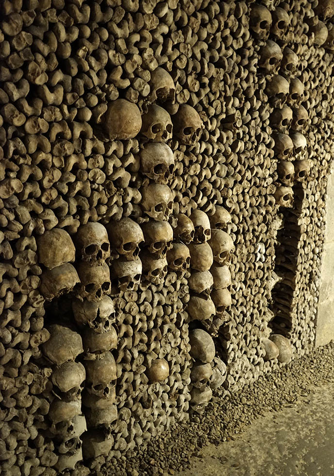 creepy paris skull collection catacombs tickets