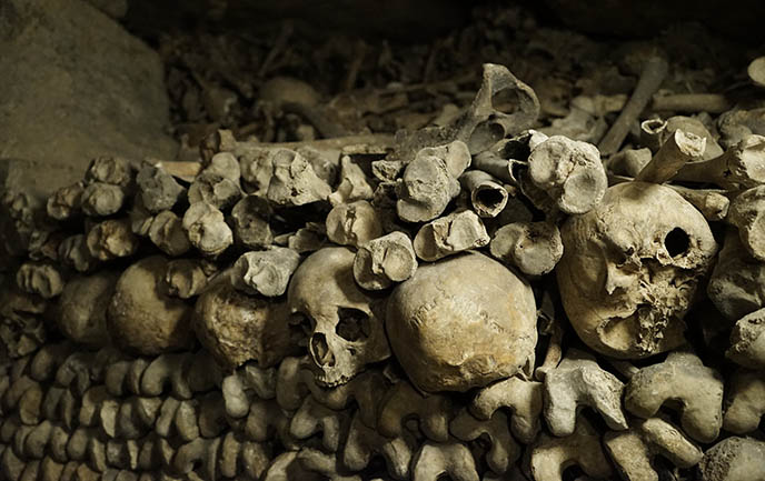 human skulls paris catacombs