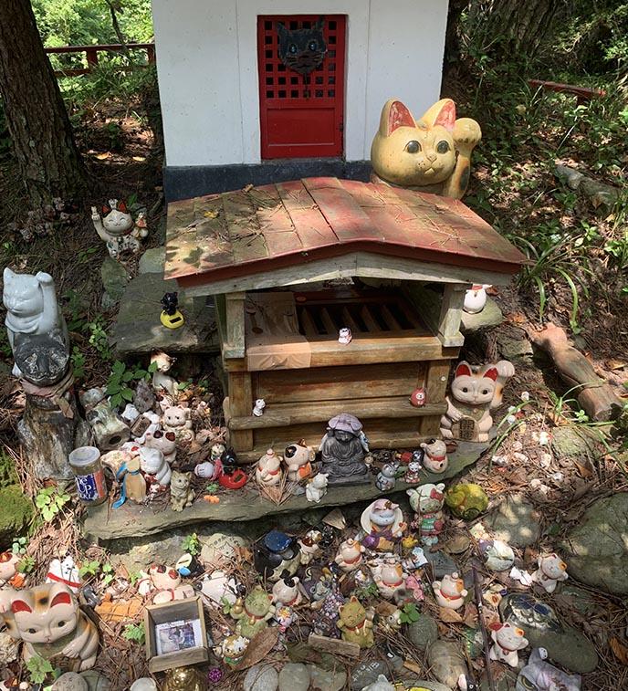 neko jinja cat shrine island tashiro jima