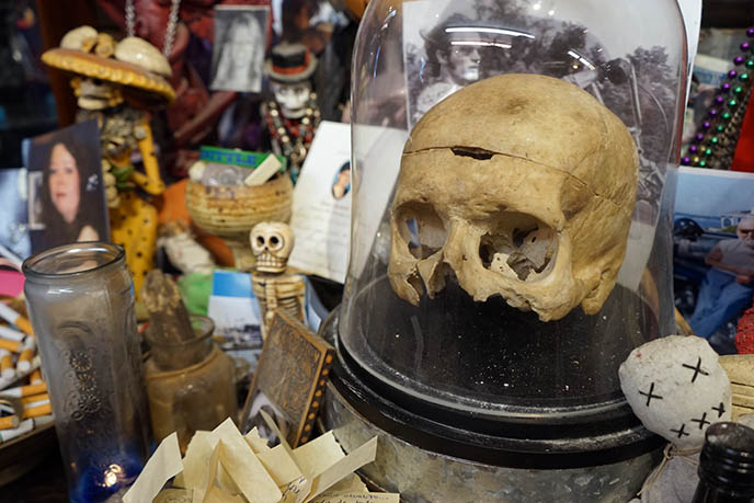 human skull, voodoo altar witches