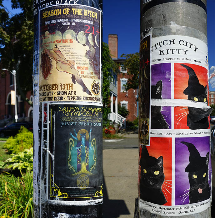 witch wicca posters salem occult parties goth clubs