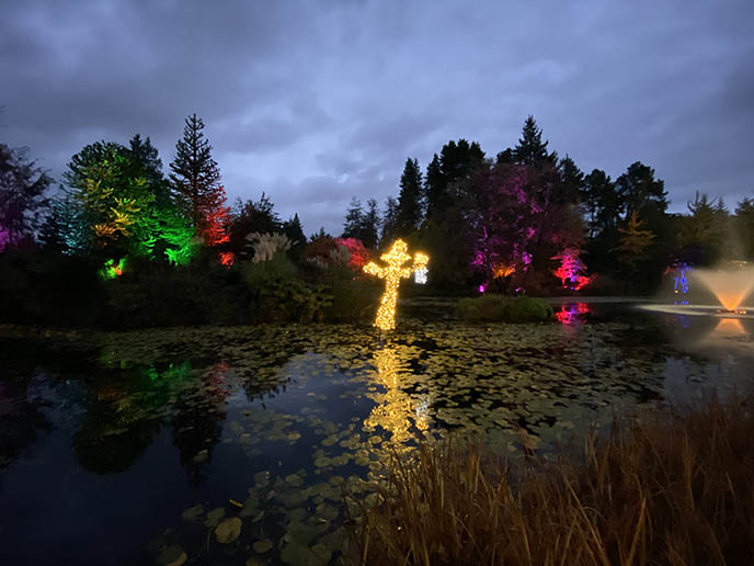 glowing halloween lights, garden light displays vancouver