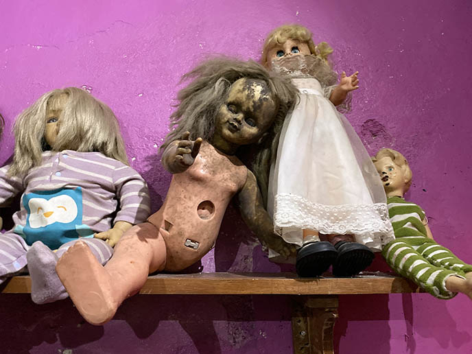 museo paranormal doll collection