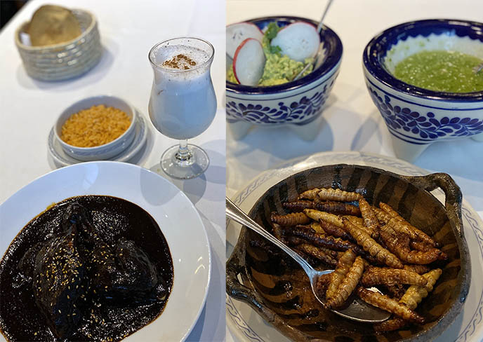 edible insects weird food dining mexico city