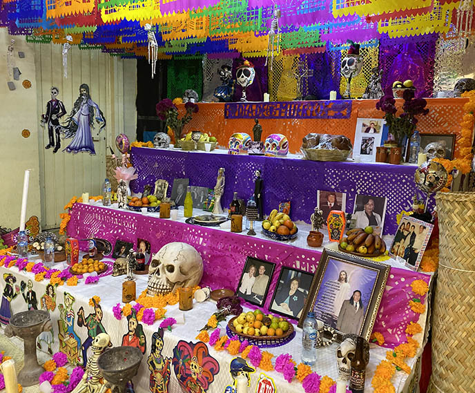 witches market spells shaman mexico city sonora