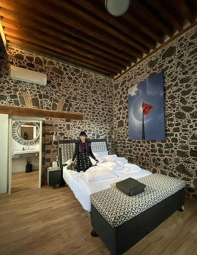 mexico city design hotels, hippest interior design hotel mumedi