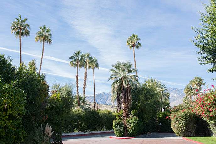 palm springs parker hotel location address