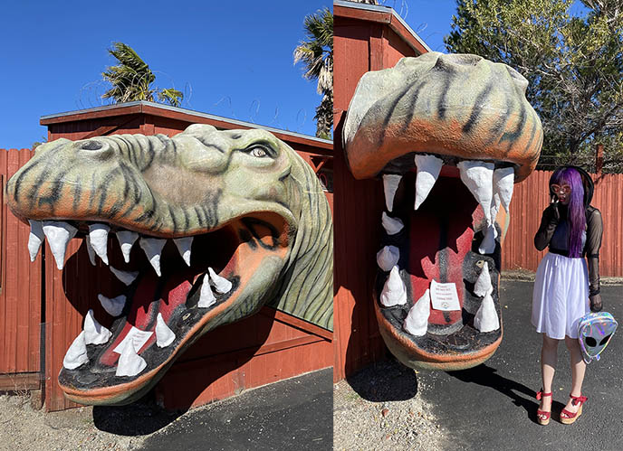 cabazon dinosaurs weird creationists roadside attraction
