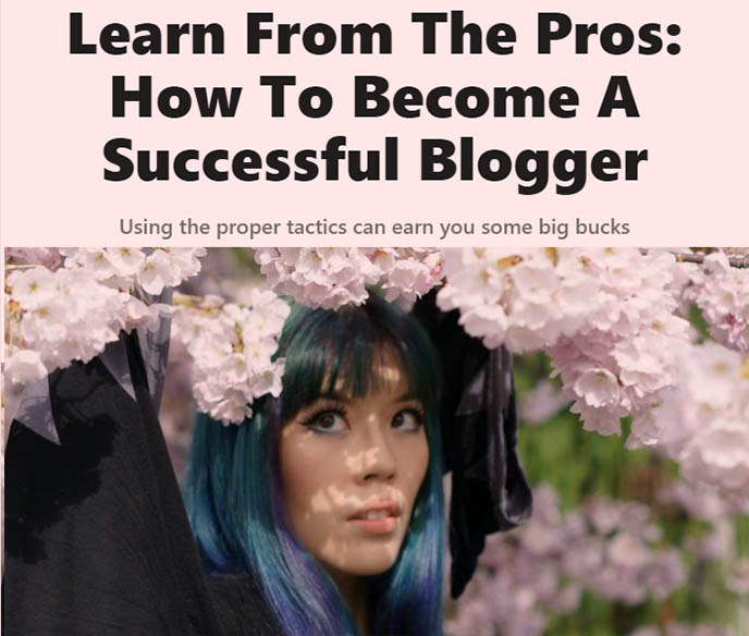 professional travel bloggers tips making money monetizing blogs