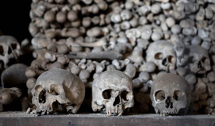 sedlec ossuary skulls catacombs human skull graveyard