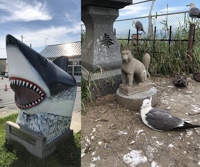 shark town station aomori temple