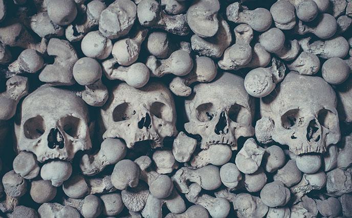 sedlec cemetery human skulls