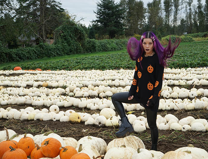 Cinderella and Snow White pumpkin patch maan farms