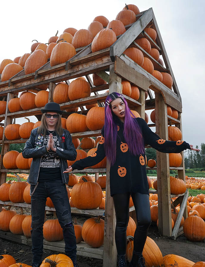 pumpkins instsagram locations vancouver abbotsford bc