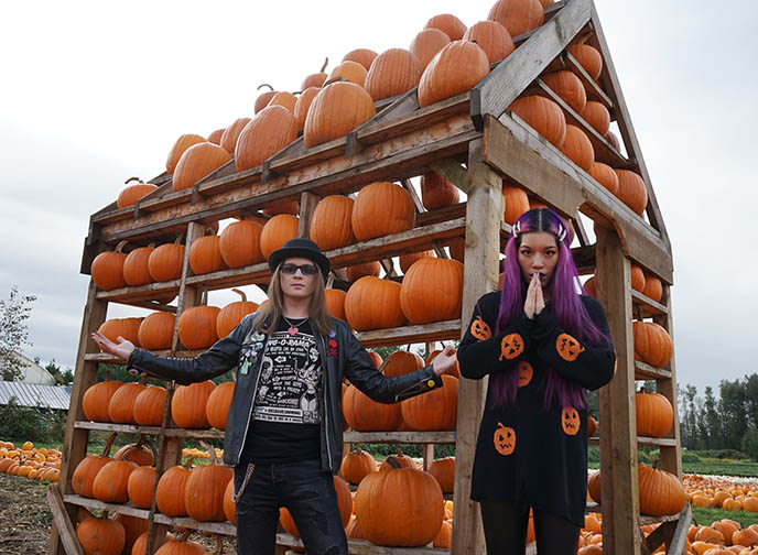 maan farms pumpkin house halloween vancouver