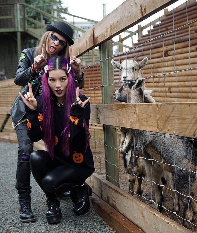 goths satanists petting goats horns baphomet goth satanic