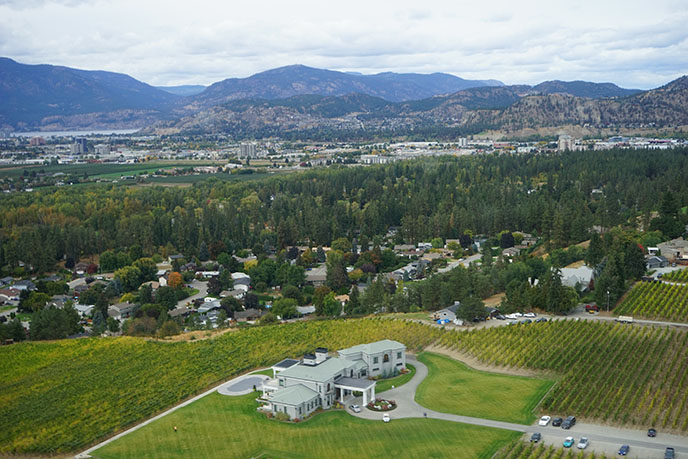 bird's eye view kelowna vineyard winery