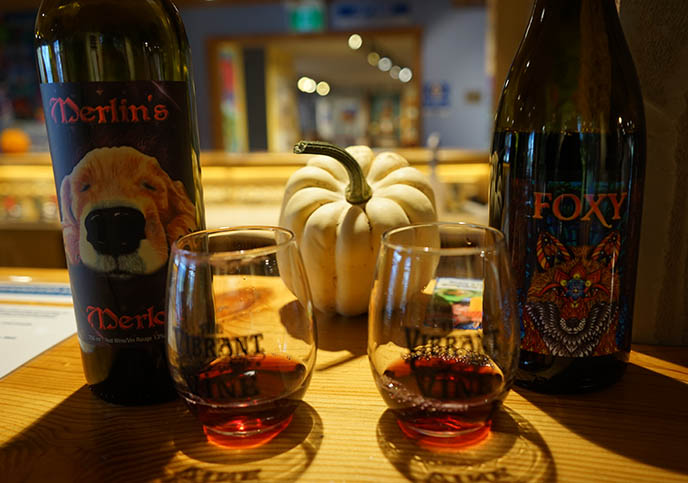 wine tasting vibrant vine educational wine tours