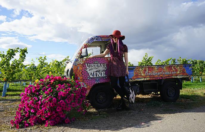 vibrant vine winery psychedelic vineyard