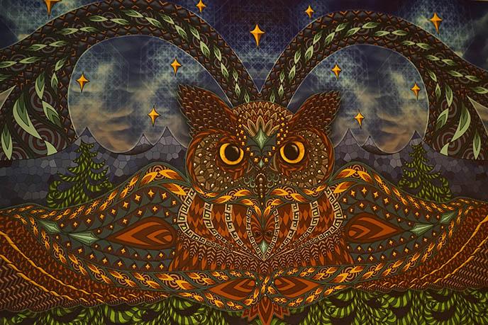 Phil Lewis artist kelowna, 3d owl painting