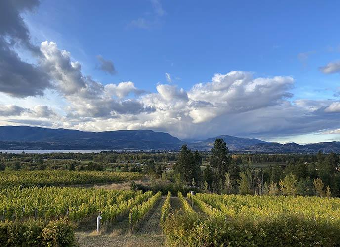 kelowna most beautiful photogenic vineyards wineries photoshoot