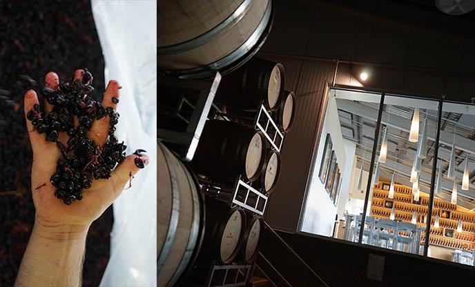 Okanagan Valley best vineyards luxury modern design