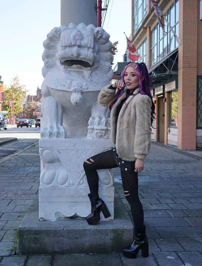 vancouver chinatown lion statues british columbia lions