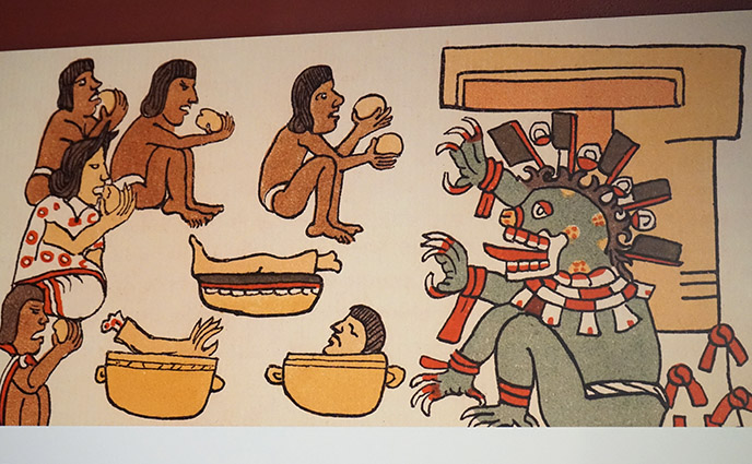 cannibalism eating human flesh exhibit san diego museum of us