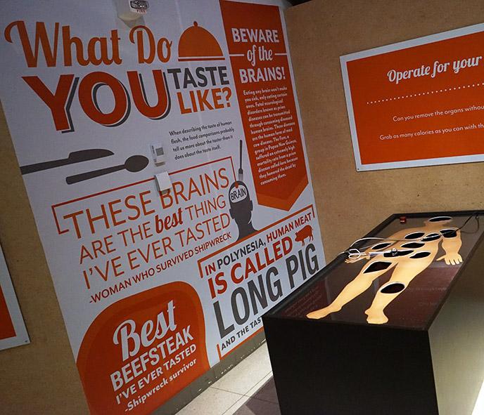 cannibals museum exhibit balboa park san diego