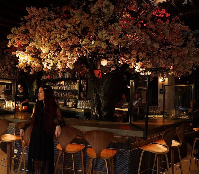 cloak and petal interior cool hip restaurants san diego