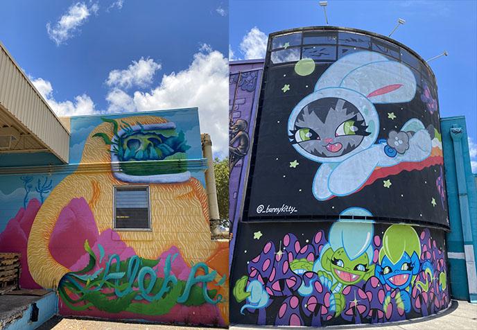 Kakaako district street art tour murals