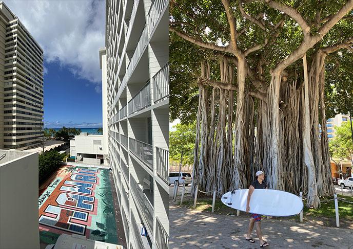 waikiki surfers surfboard culture