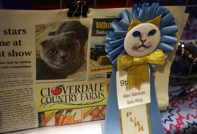 vancouver cat show winner